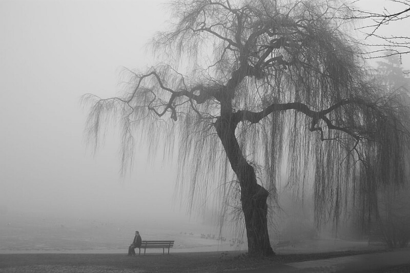 Depresje sezonowe, maskowane, z urojonymi winami