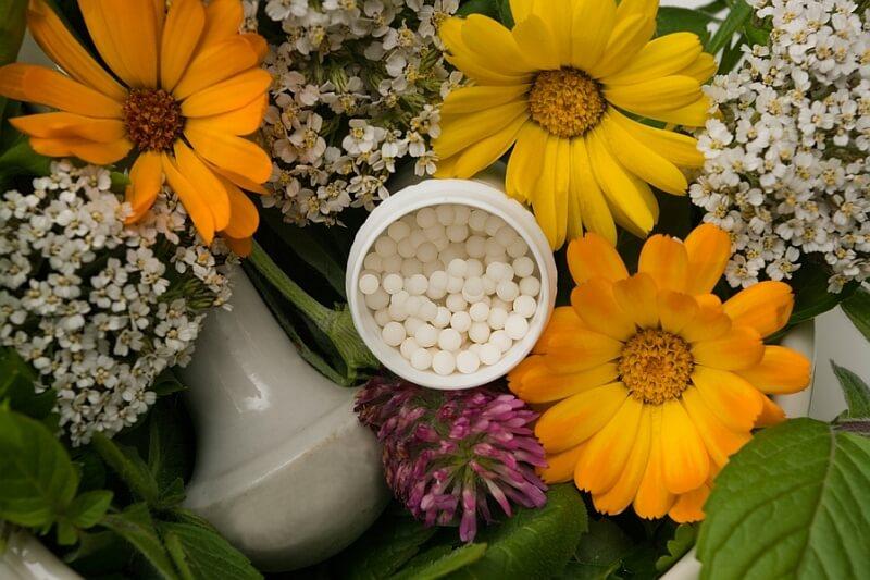 ABC wiedzy o homeopatii