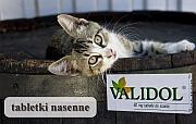 choroba nerwicowa validol - Validol