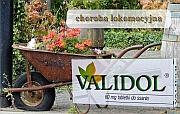 stres - validol - Validol