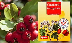 produkty na odporność - głóg, głogowe - Cukierki_Glogowe