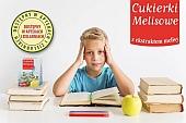 ziołowe produkty - melisa - Cukierki_Melisowe